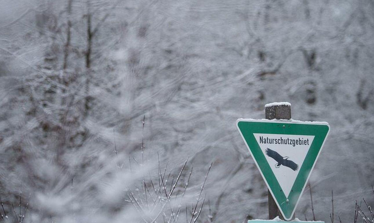 Naturschutz versäumt: EU verklagt Deutschland