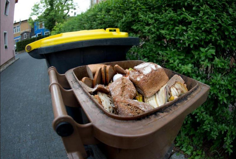 Zu viel Plastik im Biomüll