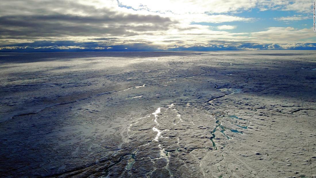 """""""Gefrorener Regenwald""""  lässt Grönlands Eisdecke schmelzen"""