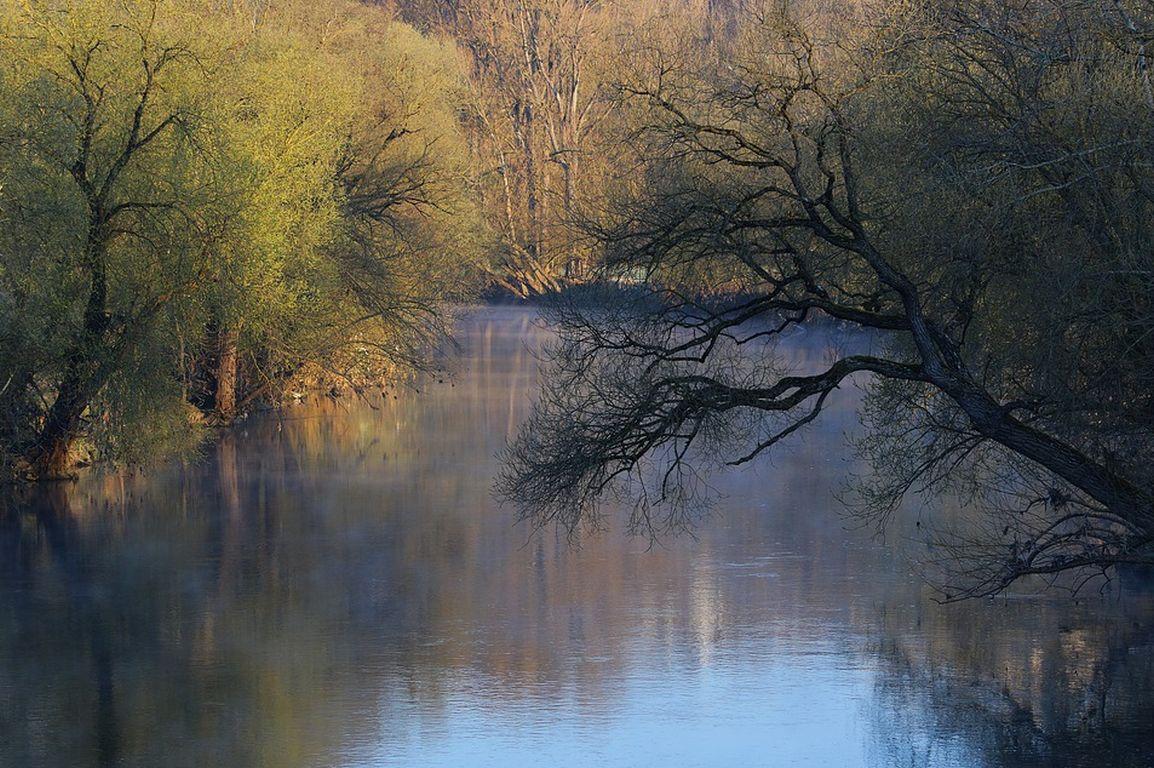 Bericht zeigt Handlungsbedarf bei Flussauen
