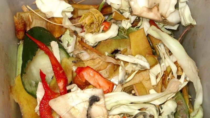 Daten zur Verschwendung von Lebensmitteln