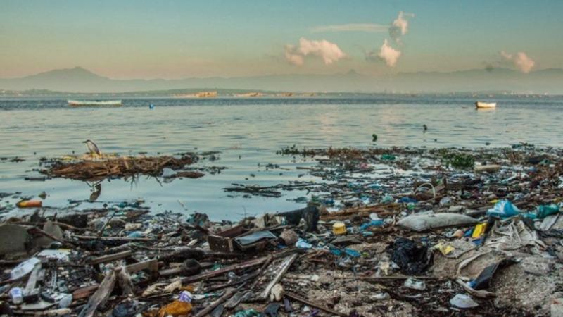 Meer und Strand vom Müll befreit