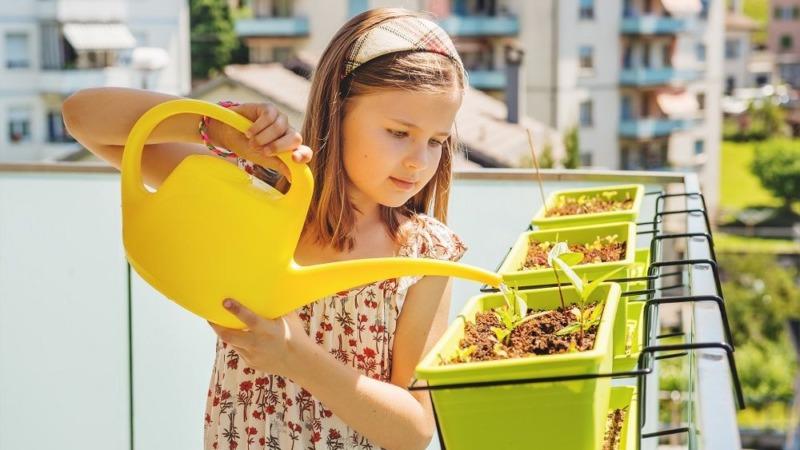 Urban Gardening: Gärtnern ohne Garten