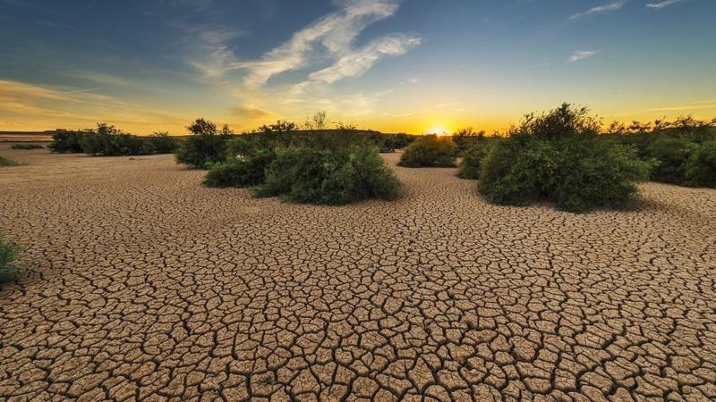 Die Natur darf man doch töten – oder?