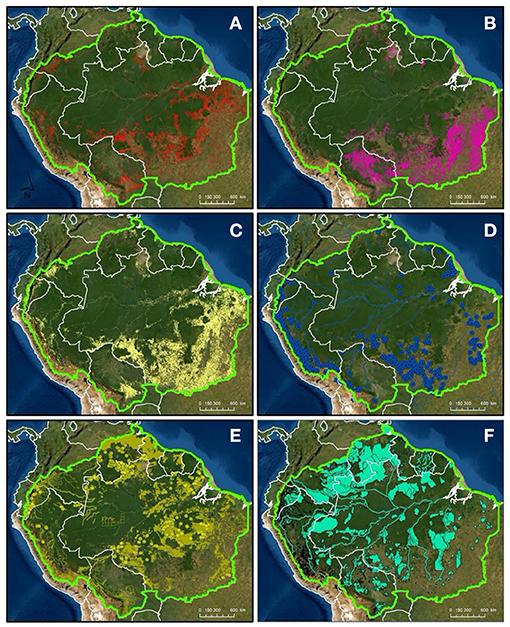 amazonas landnutzung frontiersin.org