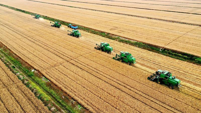 Grüne Landwirtschaft: Agrarlobbys untergraben den EU-Plan