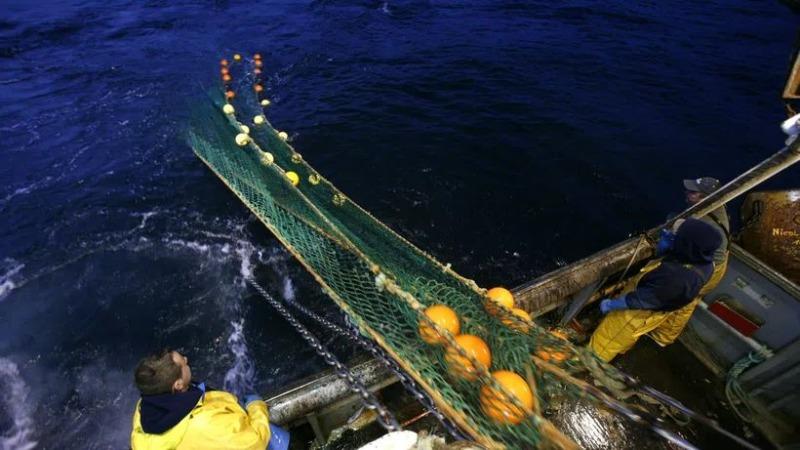 Schutzgebiete am Meeresgrund halten Kohlenstoff unter Verschluss