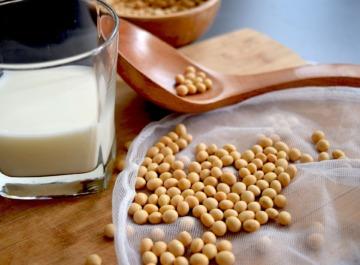 sojamilch soy milk bigfatcat pixabay