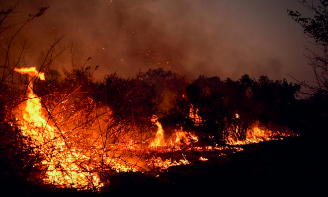 Pantanal in Flammen