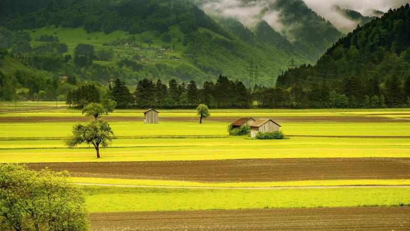 Wird die Schweiz bald pestizidfrei?