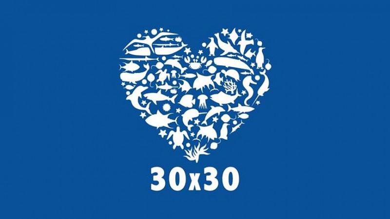 Wir müssen bis 2030 30% der Natur schützen