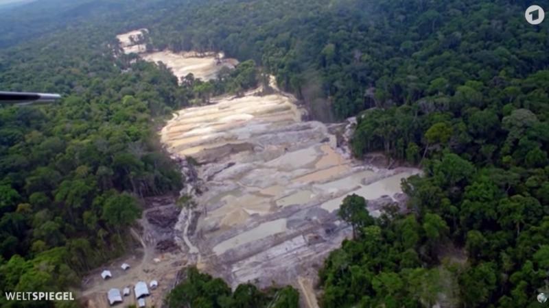 Ausbeutung im Amazonas