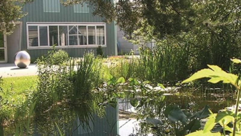 Bund fördert naturnahe Grünflächen in Städten