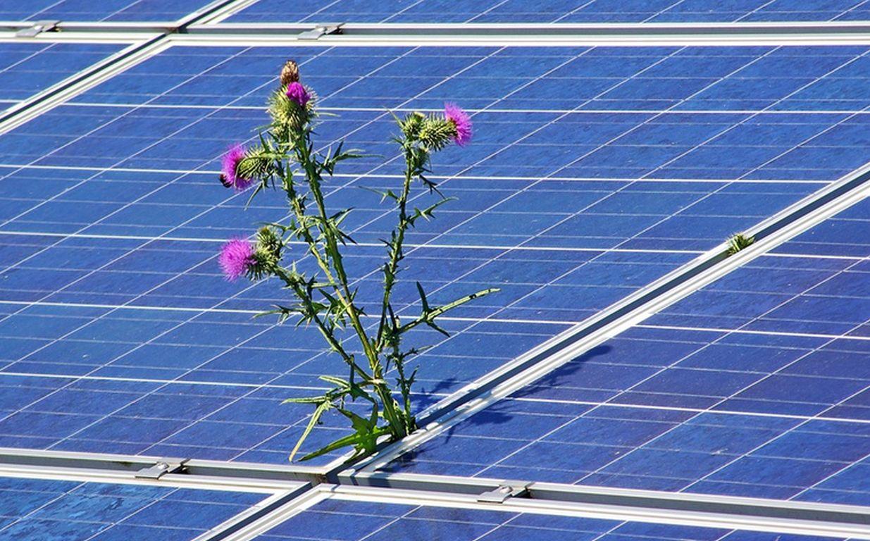 Solarzellen mit tausendfacher Power