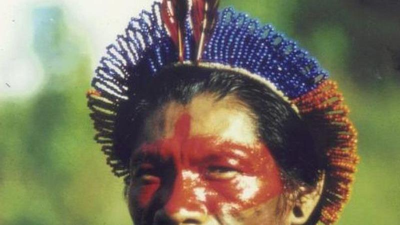 Lässt sich der koloniale Genozid in Amazonien messen?