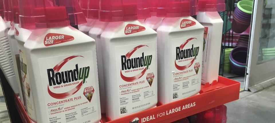 Monsanto muss 400.000 Euro Strafe  zahlen