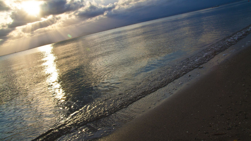 Riesiges Fischsterben im Mar Menor