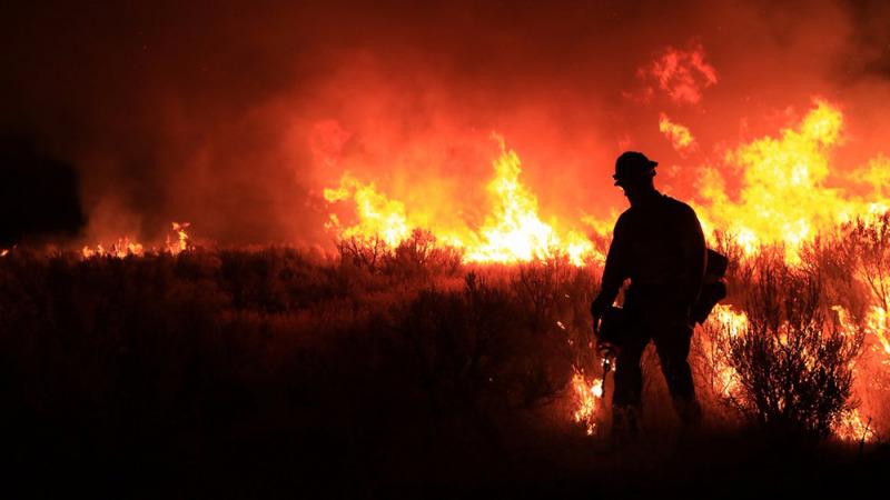Warme Nächte machen Waldbrände aktiver