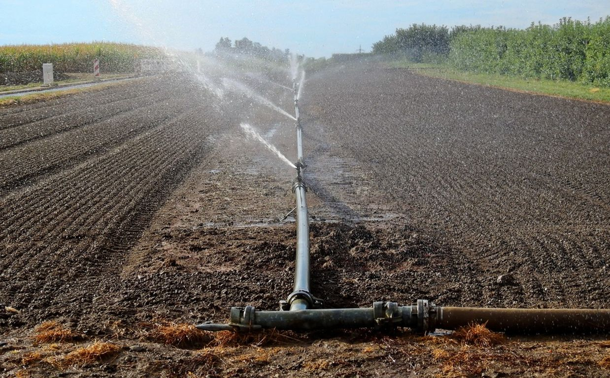 WWF untersucht Bewässerung für deutsche Erhährung