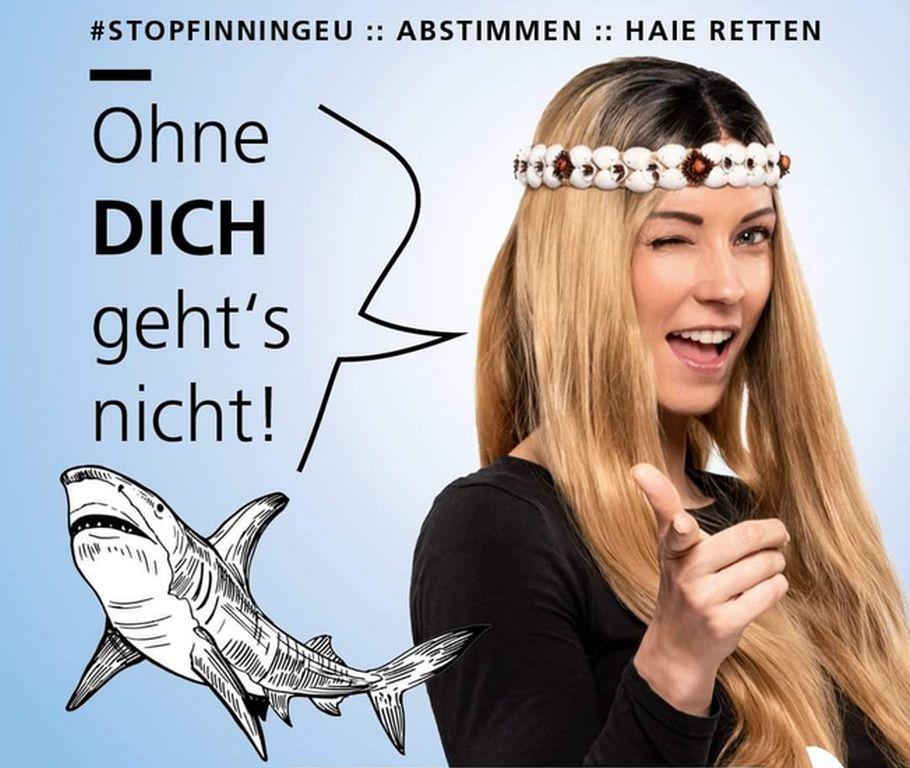 #StopFinningEU fordert Handelsverbot von Haiflossen