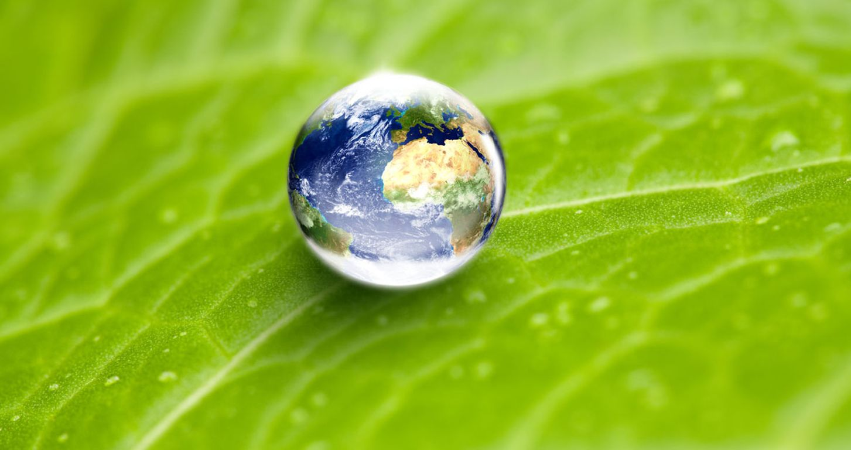 Palette aus Recyclingkunststoff: Weg in regenerative Zukunft