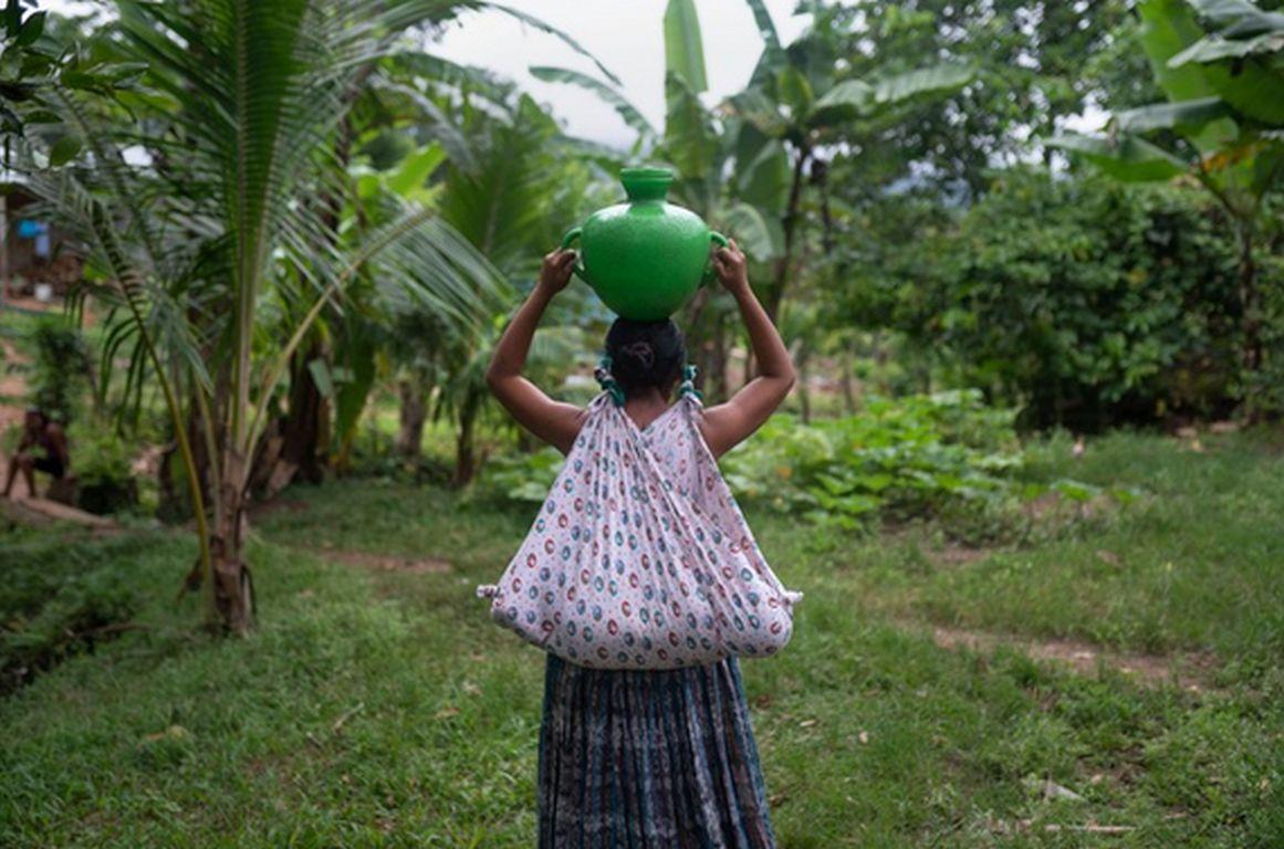 Kampagne gegen Ausbeutung in der Landwirtschaft
