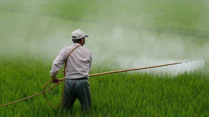 11.000 Pestizid-Tote: ÖDP warnt vor  Lobbyisten bei der UNO
