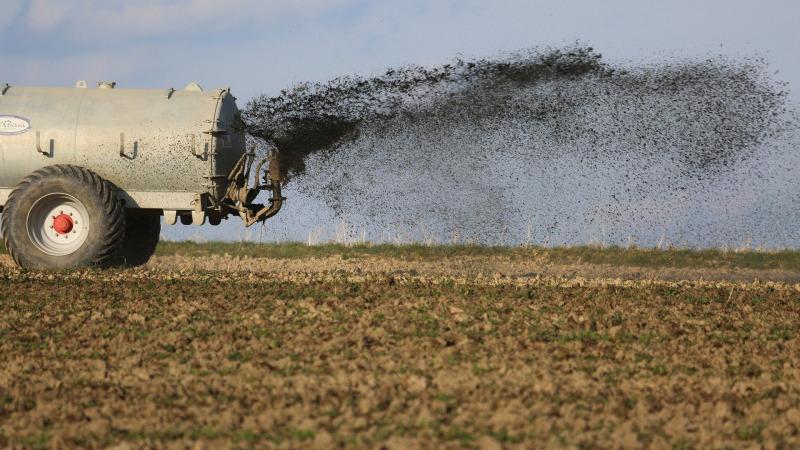 Wasserverschmutzung durch Nitrate